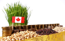 Canada flag waving with stack of money coins and piles of wheat Stock Photos