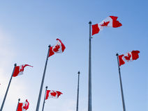 Canada Flags against blue sky Stock Photo
