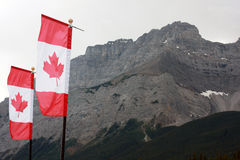 Canada flags. At national park Royalty Free Stock Photos