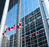 Canada Flags reflect against Building. Royalty Free Stock Image