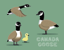 Canada Goose Cartoon Vector Illustration Stock Illustration
