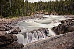 Canada, Jasper Nation Park royalty free stock photo