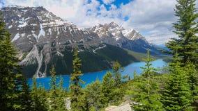 canada jeziora peyto Obrazy Royalty Free