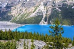 canada jeziora peyto Zdjęcie Royalty Free