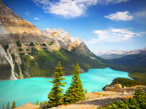Canada Landscape Mountains, Peyto Lake, Banff National Park. Spectacular Canadian landscape view. Peyto Lake and mountains in Banff National Park. Canada Stock Photos