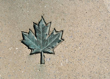 Canada Maple Leaf Stock Image