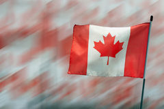 Canada Maple Leaf Flag Stock Photography