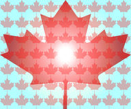 Canada Maple Leaf Royalty Free Stock Photo