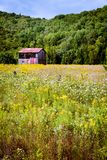 Canada - near Mont Tremblant, flower field. One of many roadsides in Canada - stretching endlessly into the giant country. A small barn in a field Royalty Free Stock Photography