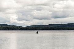 Canada Ontario Lake of two rivers Couple on a Canoe Canoes on the water Algonquin National Park. Canada Ontario Lake of two rivers Couple on a Canoe Canoes on Royalty Free Stock Images