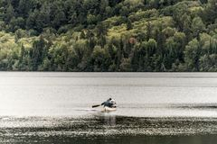 Canada Ontario Lake of two rivers Couple on a Canoe Canoes on the water Algonquin National Park Royalty Free Stock Photos
