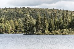 Canada Ontario Lake of two rivers natural wild landscape near the water in Algonquin National Park Royalty Free Stock Images
