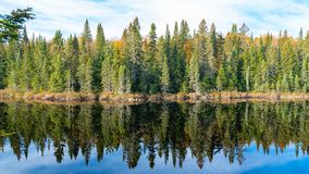Canada, panorama of a lake in the forest