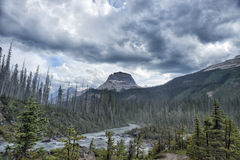 Canada Rocky Mountains Panorama Royalty Free Stock Image