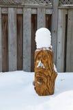 canada winter Στοκ εικόνα με δικαίωμα ελεύθερης χρήσης