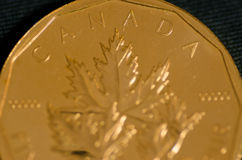 Canada (word) on Canadian Gold Maple Leaf Coin Royalty Free Stock Photos