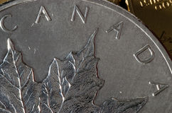 Canada (word) on Canadian Silver Maple Leaf Coin Stock Image