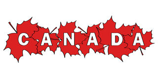 Canada. Word Canada written by letters cut out of red maple leaves Stock Photography