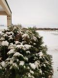 canada zimy zdjęcie stock