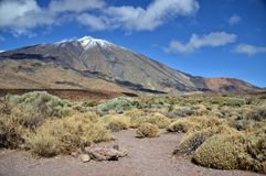 canadas canary del islands las西班牙teide tenerife谷火山 图库摄影