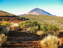 canadas canary del islands las Ισπανία tenerife teide ηφαίστειο κοιλάδων Στοκ εικόνες με δικαίωμα ελεύθερης χρήσης
