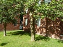 Canaday Hall, двор Гарварда, Гарвардский университет, Кембридж, Массачусетс, США стоковые фото