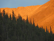Canadense Montanhas Rochosas Foto de Stock