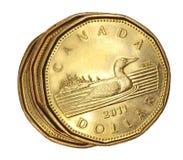 Canadense uma moeda do dólar Foto de Stock