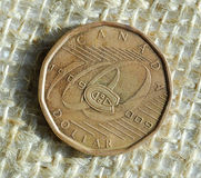 Canadense uma moeda do dólar Fotos de Stock Royalty Free