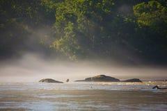 Canadensis de Branta sur la rivière Chattahoochee dans la grenouille Photos libres de droits