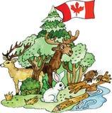 Canadese dieren vectorillustratie Stock Afbeeldingen