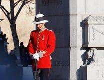 Canadese Militair In Historic Uniform bij Cenotaaf voor Herinneringsdag Royalty-vrije Stock Afbeeldingen