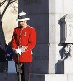 Canadese Militair In Historic Uniform bij Cenotaaf voor Herinneringsdag Stock Fotografie