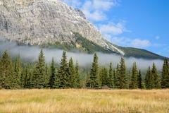 Canadese Rotsachtige die Bergen, door groene bos en ochtendmist worden behandeld royalty-vrije stock afbeeldingen
