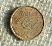 Canadese una moneta del dollaro Fotografie Stock Libere da Diritti