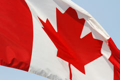 Canadese Vlag stock foto