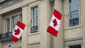 Canadese Vlaggen op Front Of Building stock video