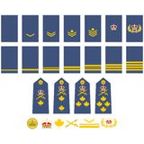 Canadian Air Force insignia Stock Photography