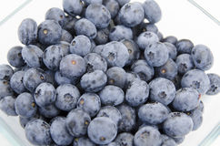 Canadian blueberries on the plate Stock Photography