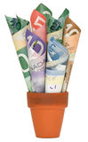 Canadian Cash. Rolled up Canadian cash in a terracotta pot royalty free stock photography