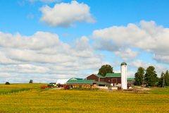 Canadian Country Farm Royalty Free Stock Images
