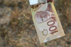 A close up of Canadian money- $100 bill royalty free stock images