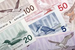 Canadian Dollars - reverse side, a background. Canadian Dollars - reverse side, a business background stock images