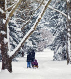 Canadian Family Winter Leisure. Family taking advantage of heavy snowfall in typical Canadian small town Royalty Free Stock Photo
