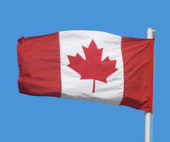 Canadian flag. The maple leaf flag of Canada Stock Image