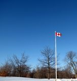 Canadian Flag. The maple leaf flies even in winter royalty free stock photography