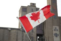 Canadian flag. With a building in background, Toronto, Ontario, Canada Royalty Free Stock Photos