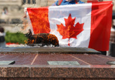 Canadian Flag at Centennial Flame. A man holding up a Canadian flag at the Centennial Flame, a commemorative structure and fountain, on Parliament Hill in Stock Photography