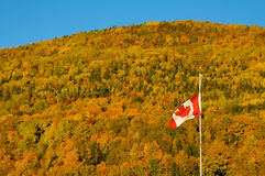Canadian fall Royalty Free Stock Photography