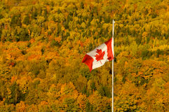 Canadian fall. Canadian flag in a fall landscape Stock Photos